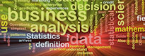 Business process analysis under the microscope of scientists